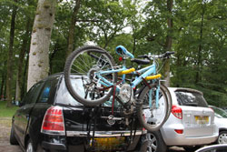 take bicycles to cycle in the New Forest