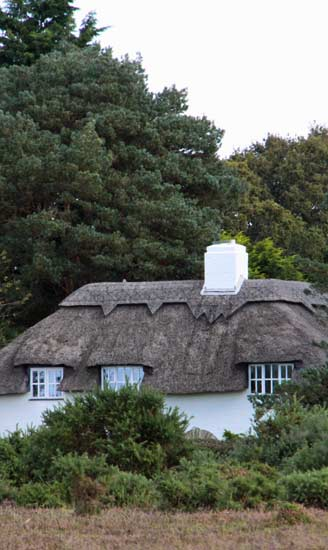rent a cottage in the New Forest
