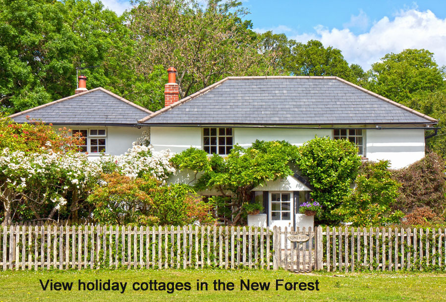 holiday cottages new forest britain